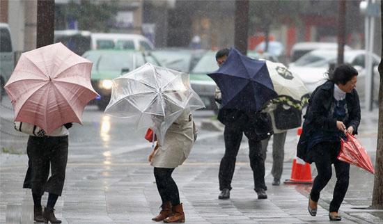 ủng đi mưa tphcm